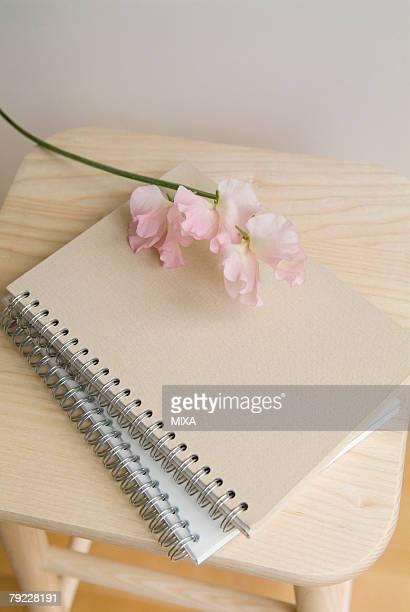 Sweet pea flowers and notebooks on stool