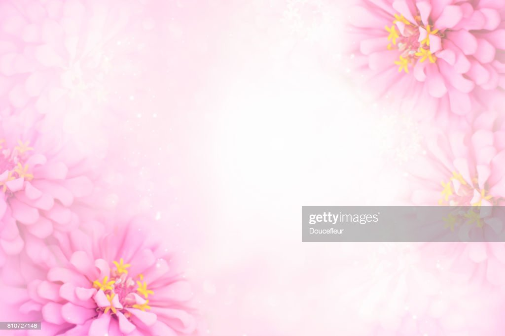 Sweet Pink Flower Frame On Soft Bokeh Vintage Background Stock Photo