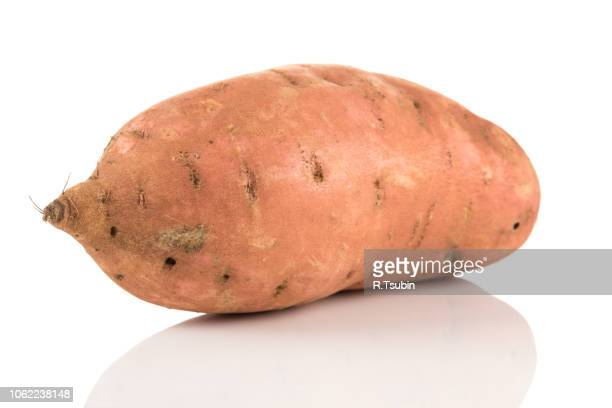 sweet potato batata on the white background isolated - yam stock pictures, royalty-free photos & images