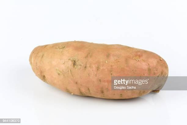 Sweet potato on a white background (Ipomoea batatas)