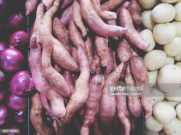 sweet potatoes on vegetable stand - danielle reid stock pictures, royalty-free photos & images