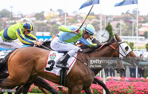 Sweet Sherry ridden by Steven Arnold wins Bertocchi Crockett Stakes at Moonee Valley Racecourse on October 22 2016 in Moonee Ponds Australia