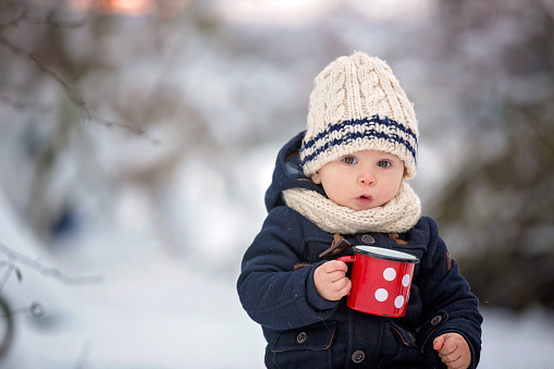 Sweet siblings, children having winter party in snowy forest.  Young brothers, boys, drinking tea from thermos. Hot drinks and beverage in cold weather 1175908600