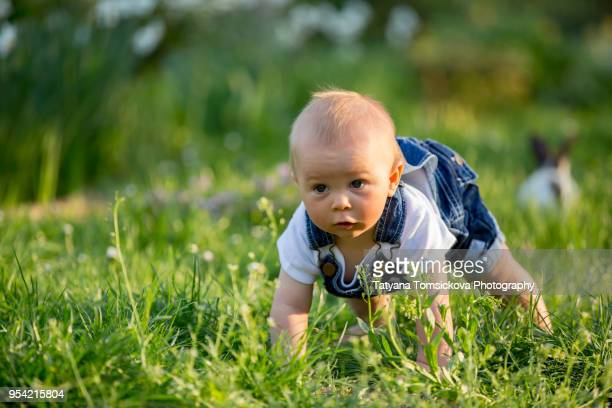 Sweet toddler baby boy with his little bunny, sitting in park, springtime on sunset, smiling