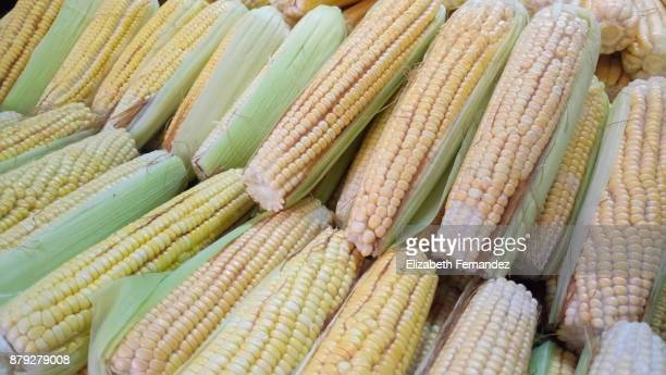 Sweetcorns arranged at market stall for sale