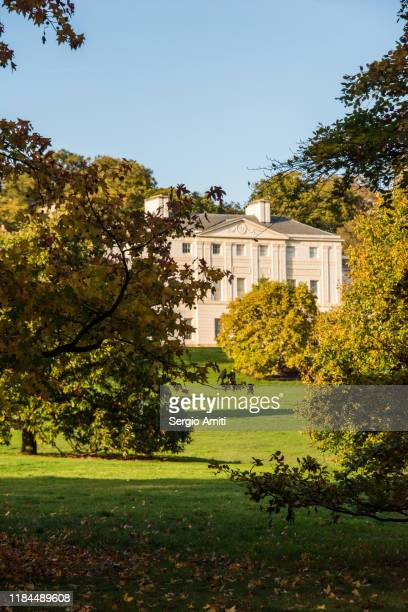 sweetgum tree with autumn leaves with kenwood house in hampstead heath, london - kenwood house - fotografias e filmes do acervo