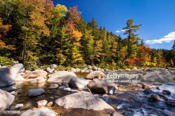 swift river color, white mountain national forest, new hampshire - swift river stock photos and pictures