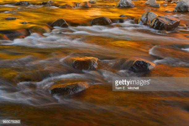 swift river fall colors - brook mitchell stock pictures, royalty-free photos & images