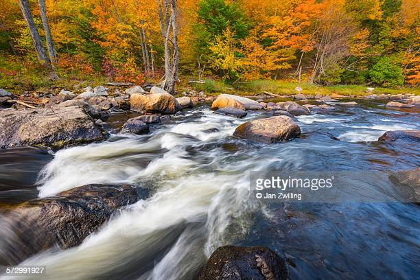 swift river in autumn - swift river stock photos and pictures