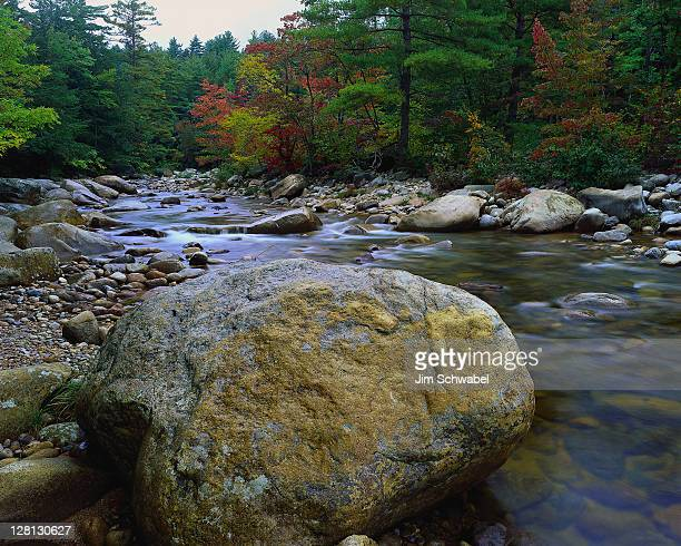 liqas067 swift river, white mts nf, nh - swift river stock pictures, royalty-free photos & images