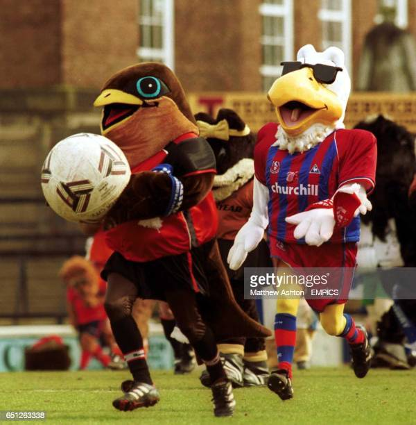 Swifty of Walsall gets chased by Pete the Eagle of Crystal Palace during the Battle of the Mascots match at Gay Meadow home of Shrewsbury Town
