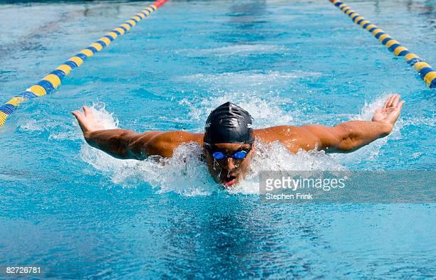 swimmer performing butterfly stroke - バタフライ ストックフォトと画像