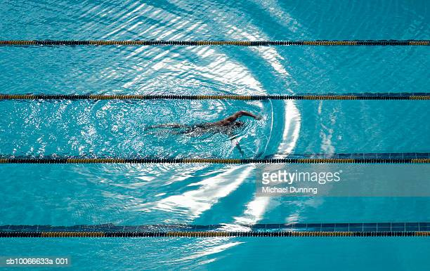 swimmer swimming in pool, elevated view - length stock pictures, royalty-free photos & images