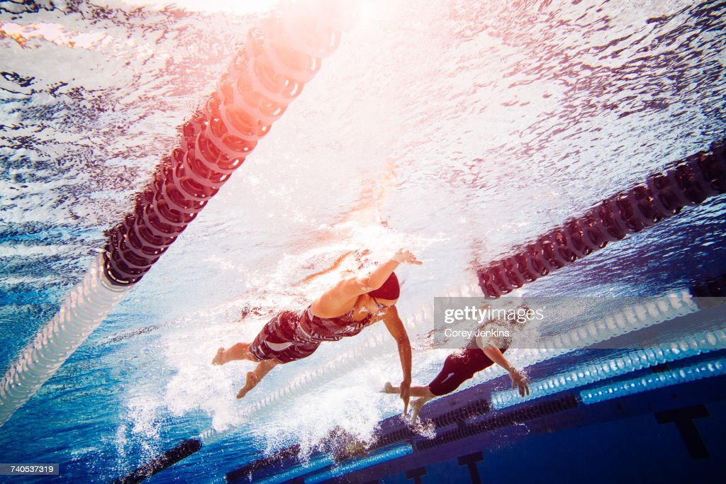 Swimmers doing freestyle in lane : Stock Photo