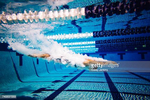 swimmers in pool - length stock pictures, royalty-free photos & images