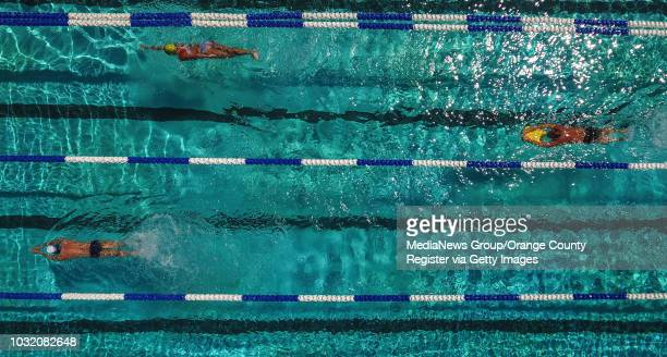 Swimmers keep cool while exercising at The Pool at Crown Valley Park in Laguna Niguel, CA, on Monday, July 23, 2018.
