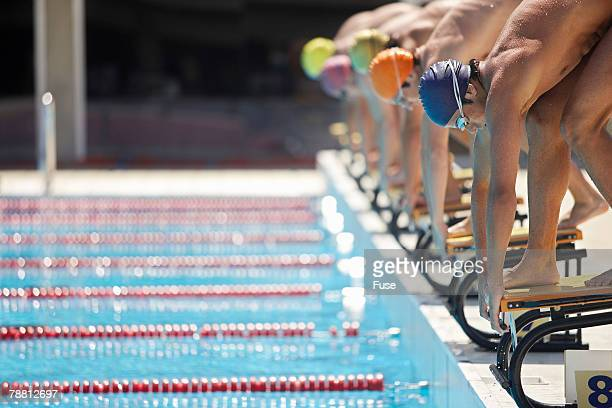 Swimmers Prepared to Dive in Pool