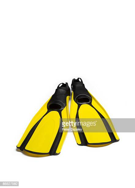 Swimming fins on white background.