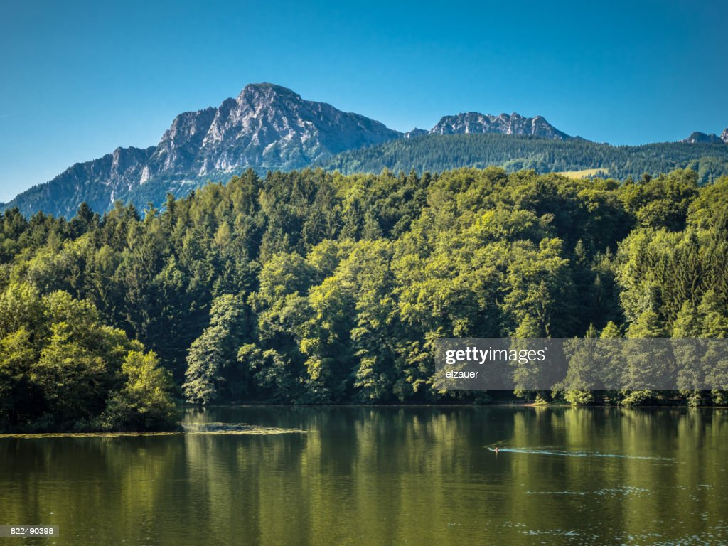 Swimming in the Hoeglwoerther lake : Stock Photo