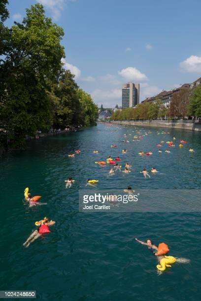 nadando no rio limmat, em zurique, suíça - rio limmat - fotografias e filmes do acervo