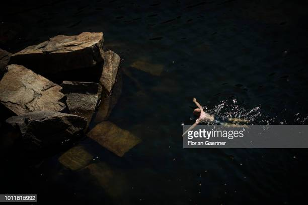 A swimming man is pictured from above on August 01 2018 in Koenigshain Germany Farmers complain harvest losses because of the dry weather over the...