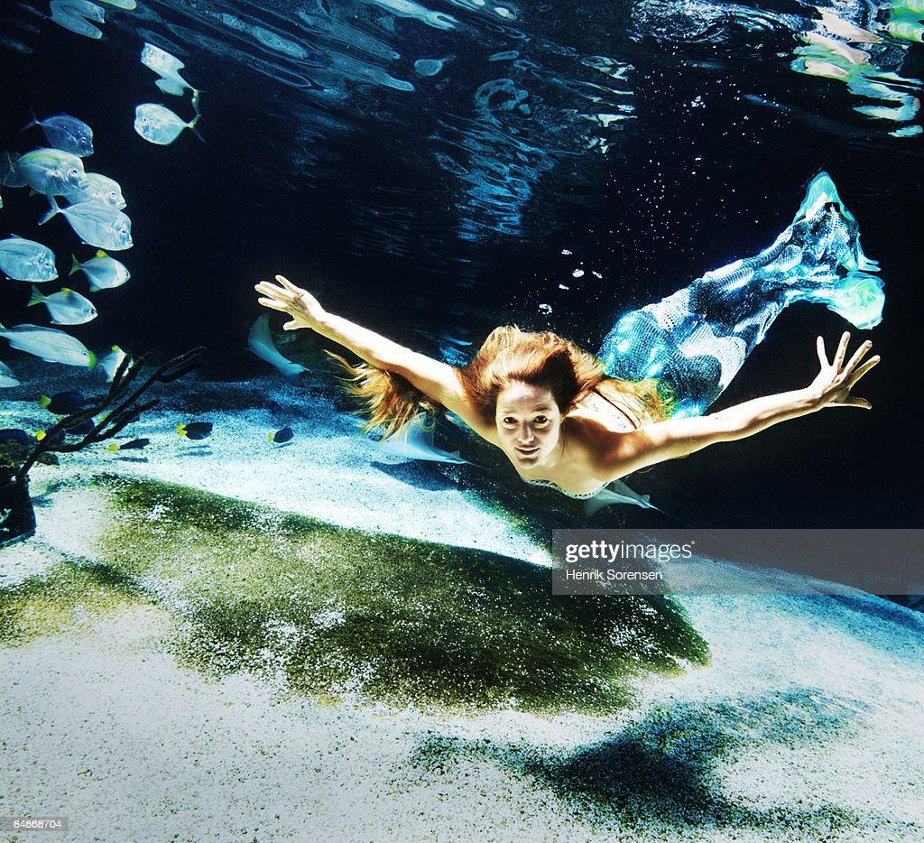 Swimming mermaid underwater : ストックフォト
