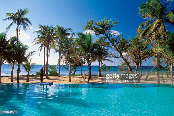 swimming pool at a group lodge, yasawa island, fiji - western division fiji stock photos and pictures