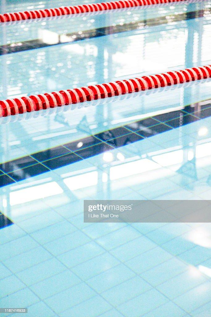 Swimming Pool Lanes 4 : Stock Photo