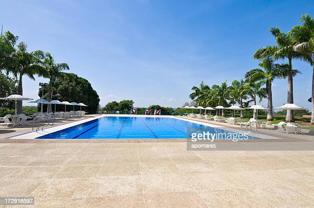 swimming pool - poolside stock pictures, royalty-free photos & images