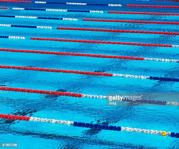 World\'s Best Pool Lane Divider Stock Pictures, Photos, and ...