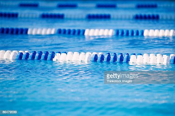 swimming pool - length stock pictures, royalty-free photos & images