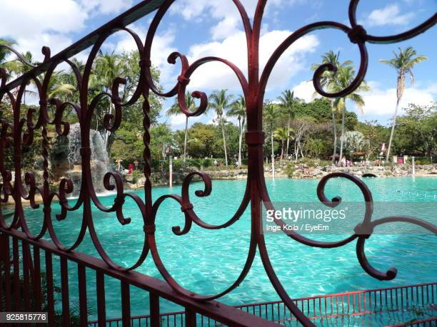 swimming pool seen through railing against sky - coral gables stock pictures, royalty-free photos & images