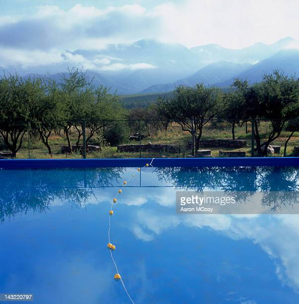 Swimming pool with reflection of trees, Northern Argentina near Cordoba