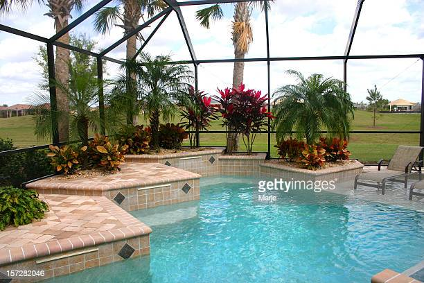 Swimming  Pool with Tropical Garden