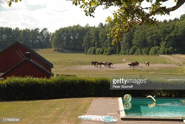 SwimmingPool im Hintergrund Pferde ZDFFilmReihe Inga LindströmFilm Folge 26 Sommer in Norrsunda PferdeGestüt Norrby Säteri bei Nyköping Schweden...