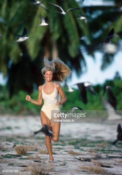 Swimsuit Issue 1979 Model Christie Brinkley is photographed for the 1979 Sports Illustrated Swimsuit issue on November 22 1978 on Bird Island...