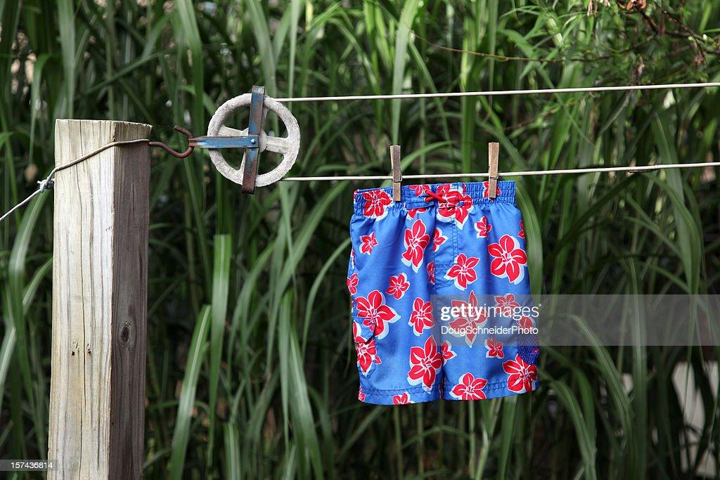 Swimsuit on Clothesline : Stock Photo