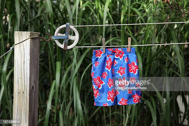 swimsuit on clothesline - zwembroek stockfoto's en -beelden