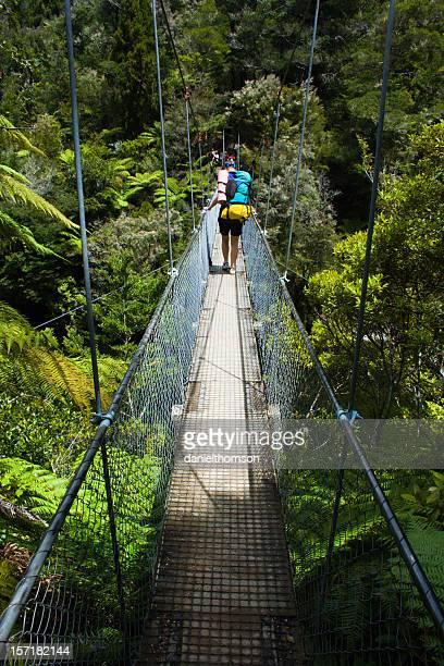 Swing bridge walker