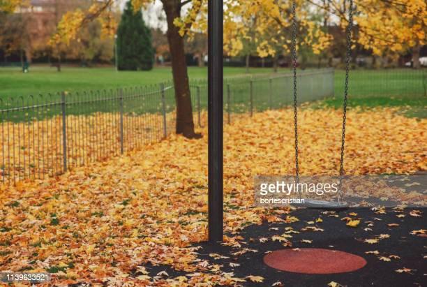 swing hanging at park during autumn - bortes stockfoto's en -beelden