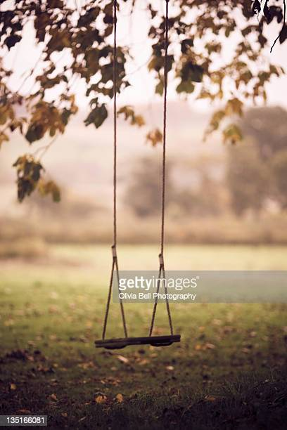 Swing in autumn