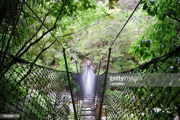 Swinging Rope Bridge, Abel Tasman National Park, NZ