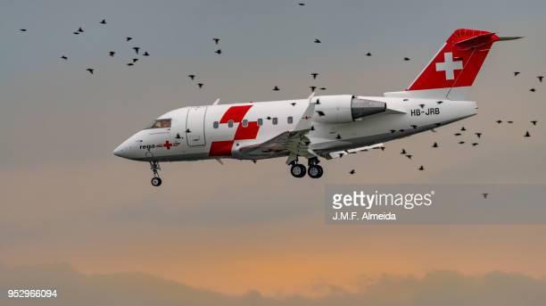 Swiss Air-Ambulance   Canadair CL-600-2B16 Challenger 604  HB-JRB