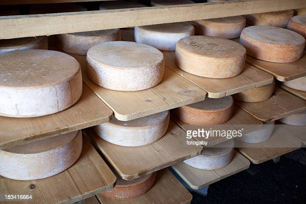 Swiss Alp-Cheeses
