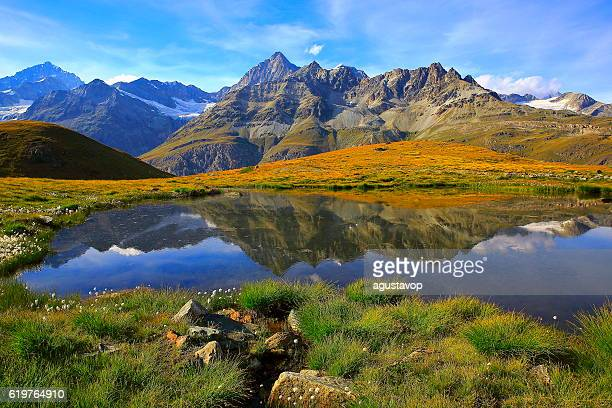 Swiss alps, lake reflection, golden autumn alpine meadow, Zermatt