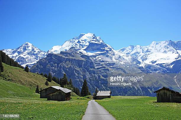 Swiss Alps, Mürren