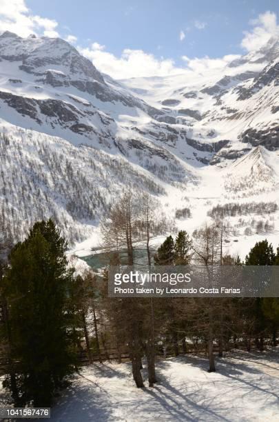 swiss alps - leonardo costa farias stock photos and pictures