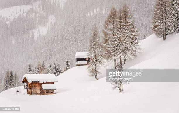 chalets suisses dans la neige - chalet de montagne photos et images de collection