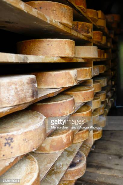 Swiss cheeses stacked in farm in valley of Grindelwald, Bernese Oberland, Switzerland