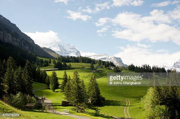 Swiss countryside near Kleine Schedegg